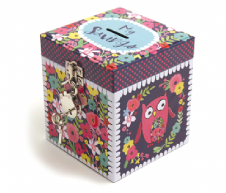 -my-savings-owl-lockable-money-tin-73-p[ekm]322×275[ekm]