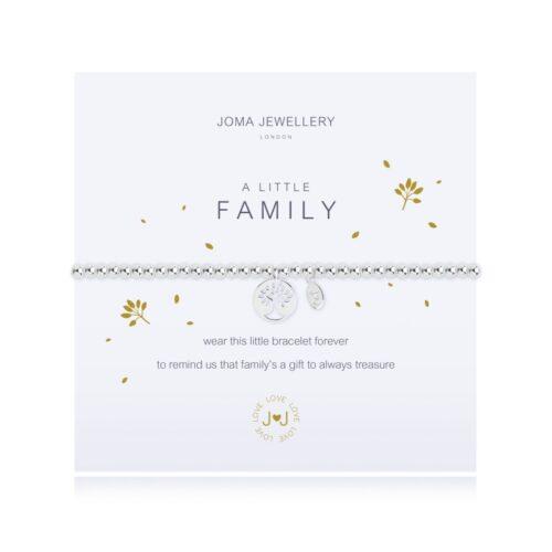 a-little-family-bracelet