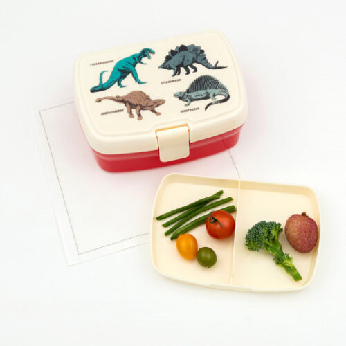 29119-prehistoric-land-lunch-box-tray-lifestyle