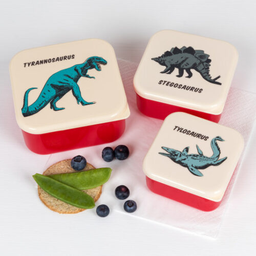 prehistoric-land-snack-boxes-set-3-28513-lifestyle